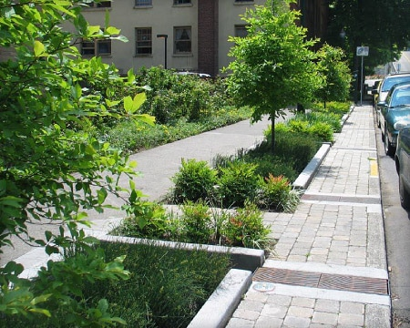 greening-and-stormwater-management